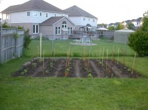2009 Garden, First Planted